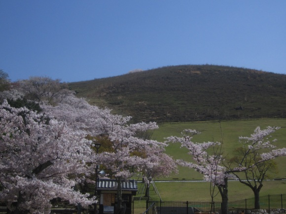 wakakusayama.jpg
